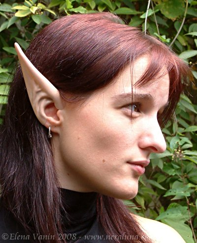 Elfie uszy długie - Elf Long - Farmerownia